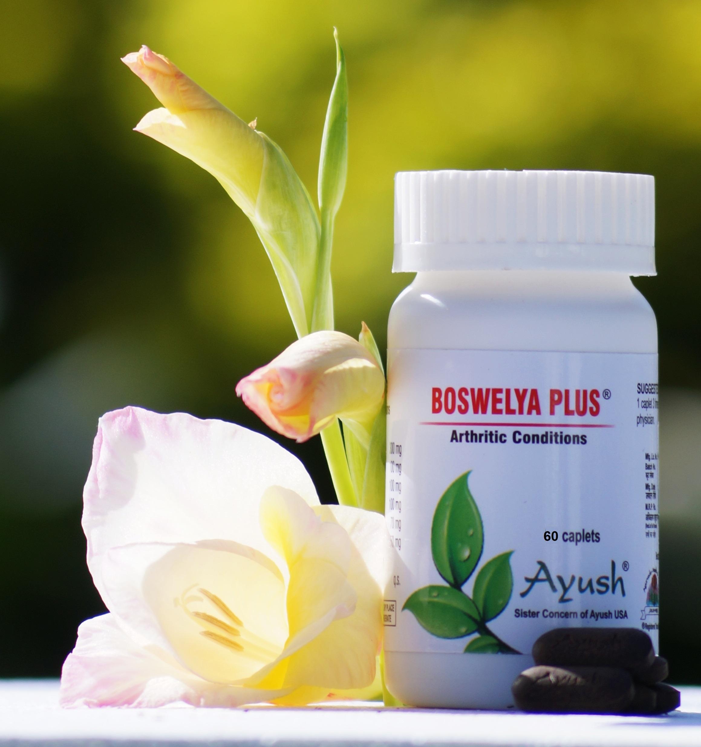 Ayush Herbs Boswelya Plus - Arthritis Support